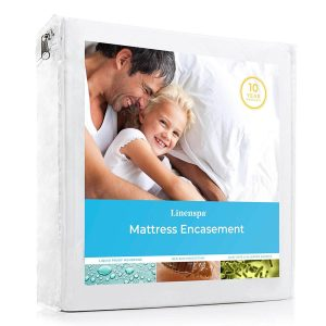 best mattress cover for bed bugs