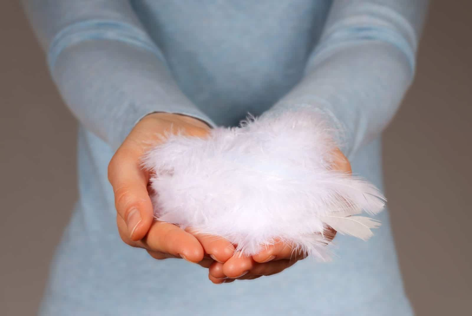 hands holding feathers