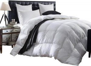 Most Comfortable Down Comforters